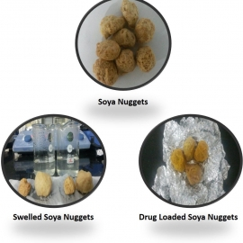 Soya Nuggets – A Novel Drug Delivery Vehicle